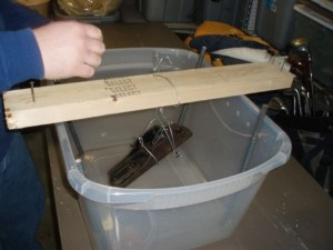 The body of the plane, and later all the metal parts, are suspended in an electrolysis bath.